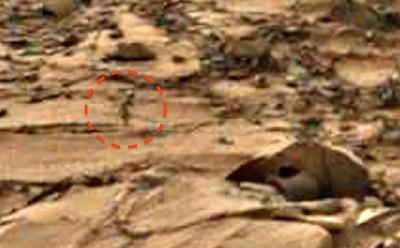 Oще един марсианец е заснет от апарат на НАСА (видео)