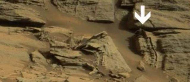 На Марс е намерен  скелет на извънземно влечуго