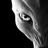 Интересни кадри с пленено извънземно същество (видео)