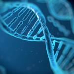 Фантастично: Хората са биороботи - в човешката ДНК са скрити кодирани текстове