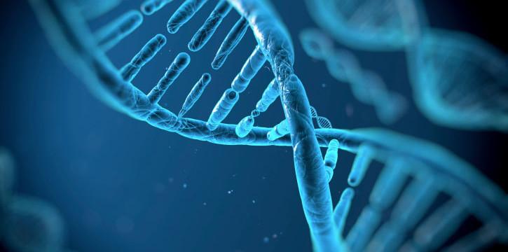 Фантастично: Хората са биороботи – в човешката ДНК са скрити кодирани текстове