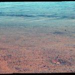 Марсоходът Opportunity стигна до брега на езеро. Официалнa снимка на НАСА +видео