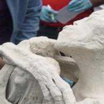 Учени : Мумиите, открити в Перу, са на извънземни рептилии (видео)