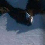 Уфолози откриха в Антарктида 12- етажен извънземен кораб (видео)
