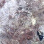 Уфoлози  откриха на Марс диск на шумерите (видео)