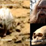 На Марс е открит череп на Йети