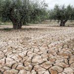 Сушата на Земята настъпва заплашително : В 9-милионния индийски Ченай водата свърши. На хоризонта са водните войни..