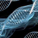 В  ДНК на човека е зашифровано послание на извънземна цивилизация: Истина или не - изясняват учените