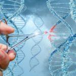 Интересно продължение по темата за произхода на земната ДНК