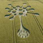 """""""Коронавирусно"""" съобщение се появи на полето във Великобритания (видео)"""